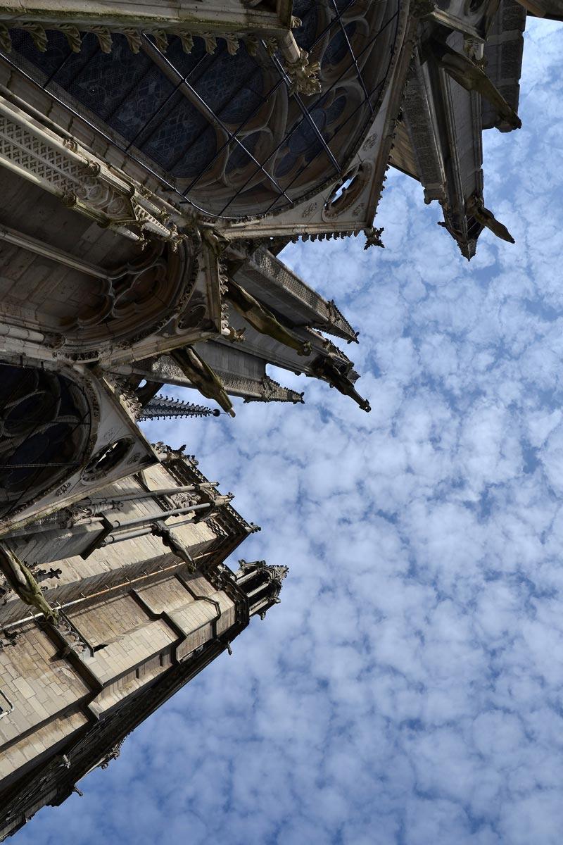 Guglie di Notre Dame che puntano verso il cielo