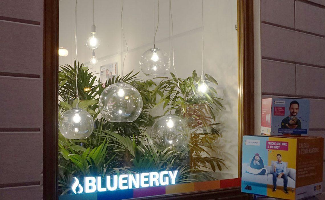 Vetrina negozio con varietà di piante e grandi lampadine