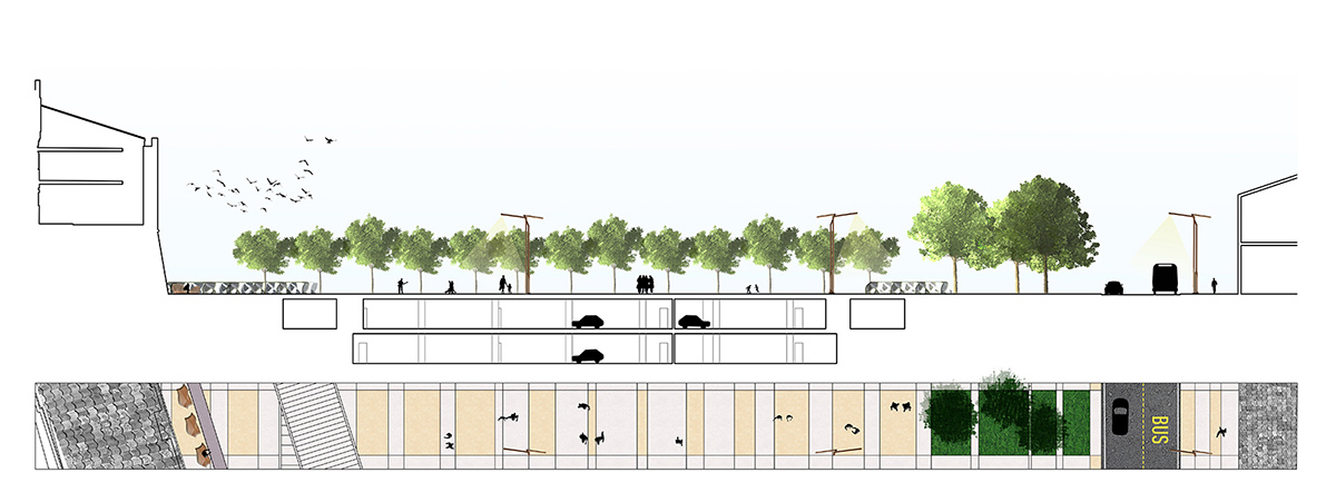 Section showing a tree-filled square located above an underground car park